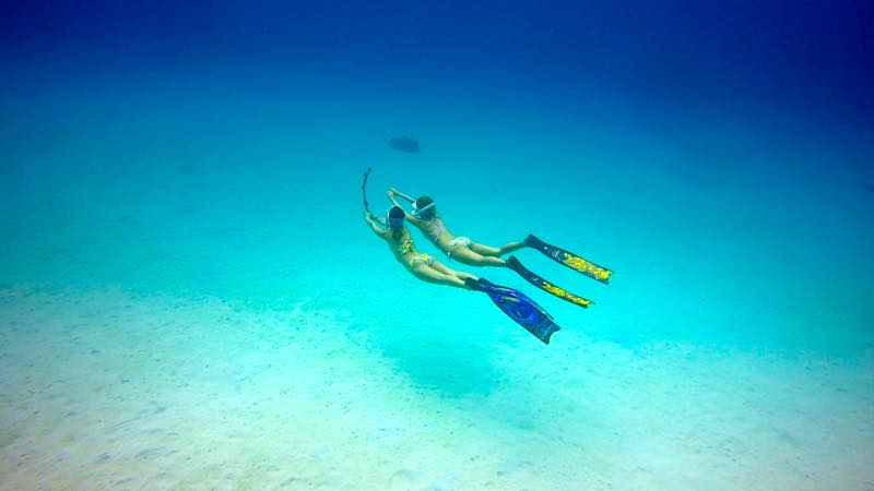 フリーダイビング